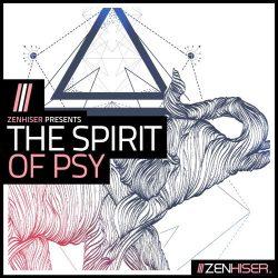 The Spirit Of Psy Sample Pack WAV