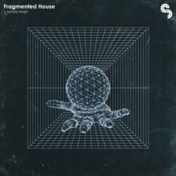 Fragmented House