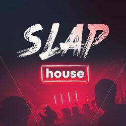 Slap House (Sample Pack & Serum Presets)