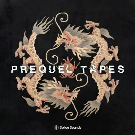 Sounds from the Dragon Room by Prequel Tapes WAV