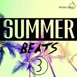 Prune Loops Summer Beats Vol.3 WAV MIDI