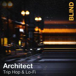 Blind Audio Architect - Trip Hop & Lofi WAV