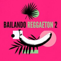 Bailando Reggaeton 2 Sample Pack & Serum Presets