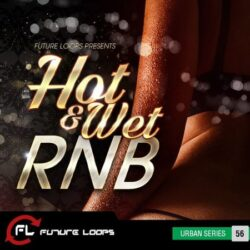 Future Loops Hot & Wet RNB WAV