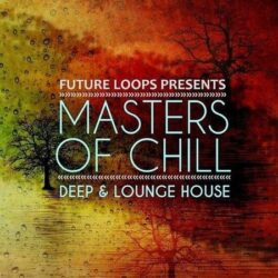 Masters Of Chill - Deep & Lounge House WAV