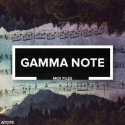 AT079 Gamma Note - Melodic Techno MIDI Files