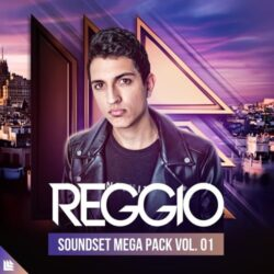 Revealed REGGIO Soundset Mega Pack Vol.1