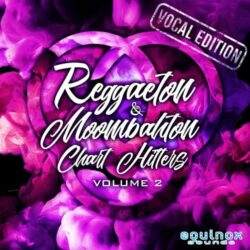 Reggaeton & Moombahton Chart Hitters Vol.2 WAV MIDI