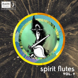 RARE Percussion Spirit Flutes Vol. 1 WAV