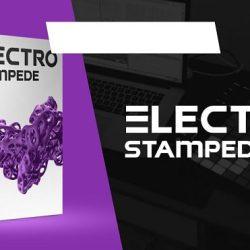 Electro Stampede // STMPD Style EDM Drums, Melodies & Kits