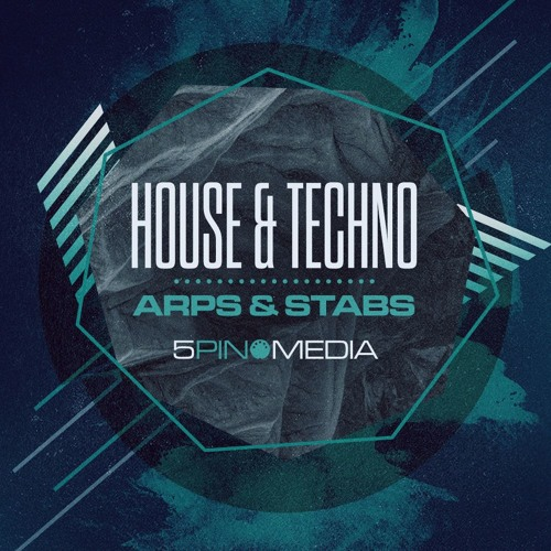 House & Techno Arps & Stabs