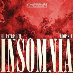 Lil Patriarch Insomnia Loop Kit WAV
