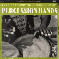 RARE Percussion Percussion Hands Vol.1 WAV