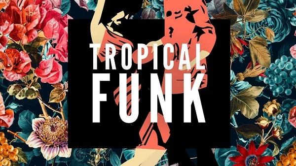 Basement Freaks presents Tropical Funk WAV