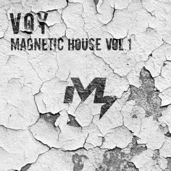 Sample Market VOY Magnetic House Vol.1 WAV