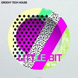 Groovy Tech House
