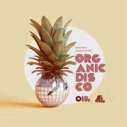 Organic Disco By Basement Freaks