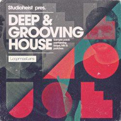 Studioheist Deep & Grooving House