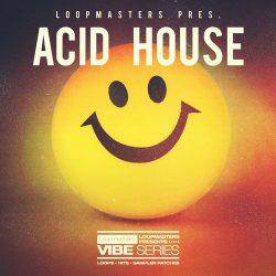 Vibes 7 Acid House