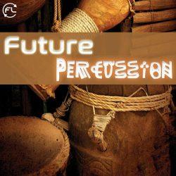 Future Loops Future Percussion WAV