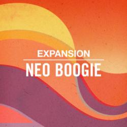 NI Neo Boogie Expansion MULTIFORMAT
