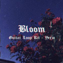 Yeezo Bloom Guitar Loop Kit WAV