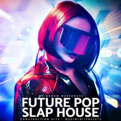 Future Pop Slap House