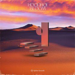 Hoodboi Bloom Volume 1 WAV MIDI