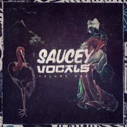 Saucey Vocals Volume 1 WAV