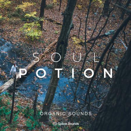 Soul Potion Organic Sounds WAV