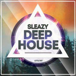 Little Bit Sleazy Deep House WAV MIDI FXB
