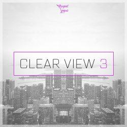 Regal Loops Clear View 3 WAV MIDI