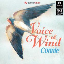 Soundiron Voice of Wind Connie v1.0 KONTAKT