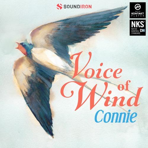 Voice of Wind: Connie v1.0 KONTAKT