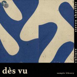 Des Vu (Sample Library) WAV