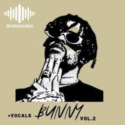 Seven Sounds Bunny Vol. 2 WAV MIDI