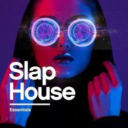 Slap House Essentials by Cyborgs' WAV MIDI FXP