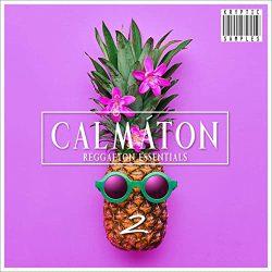 Kryptic Samples Calmaton 2 WAV MIDI