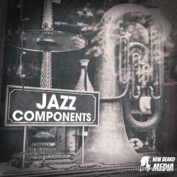 New Beard Media Jazz Components Vol 2 WAV
