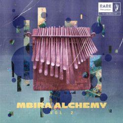 RARE Percussion Mbira Alchemy Vol.2 WAV