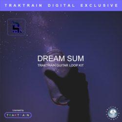 Dream Sum Guitar Loop Kit WAV