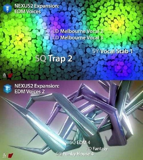 reFX Nexus Expansion - EDM Voices 1 & 2