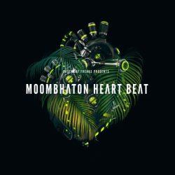 Moombahton Heart Beat By Basement Freaks WAV